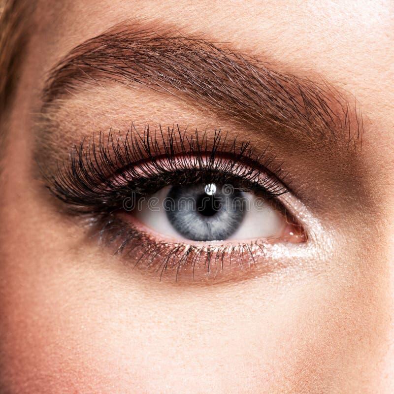 Tiro macro do olho bonito do ` s da jovem mulher foto de stock
