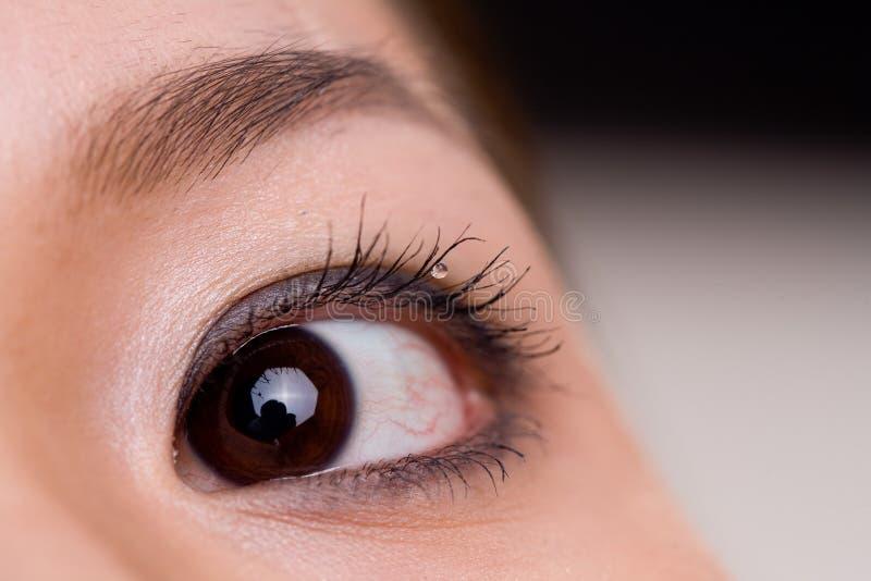 Tiro macro do olho de uma mulher foto de stock