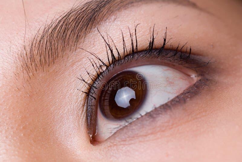 Tiro macro do olho de uma mulher imagens de stock
