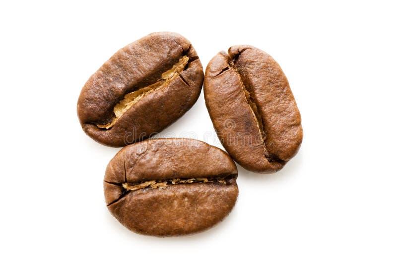 Tiro macro isolado de feijões de café fotografia de stock