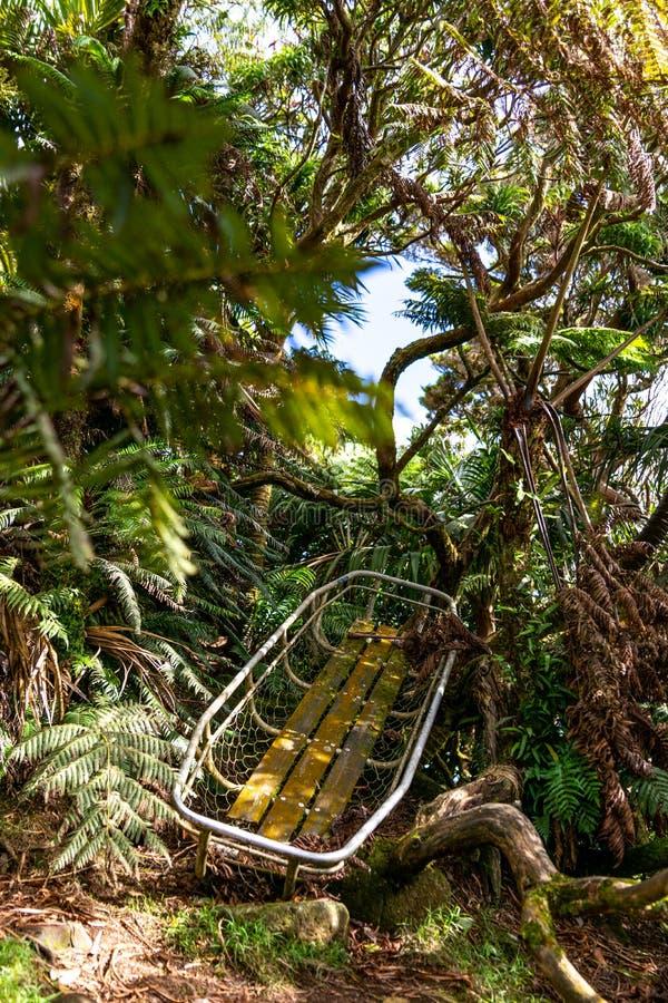 Tiro misterioso da selva do uma maca do salvamento velha e rotting da montanha perto da cimeira da montagem Gower imagens de stock royalty free
