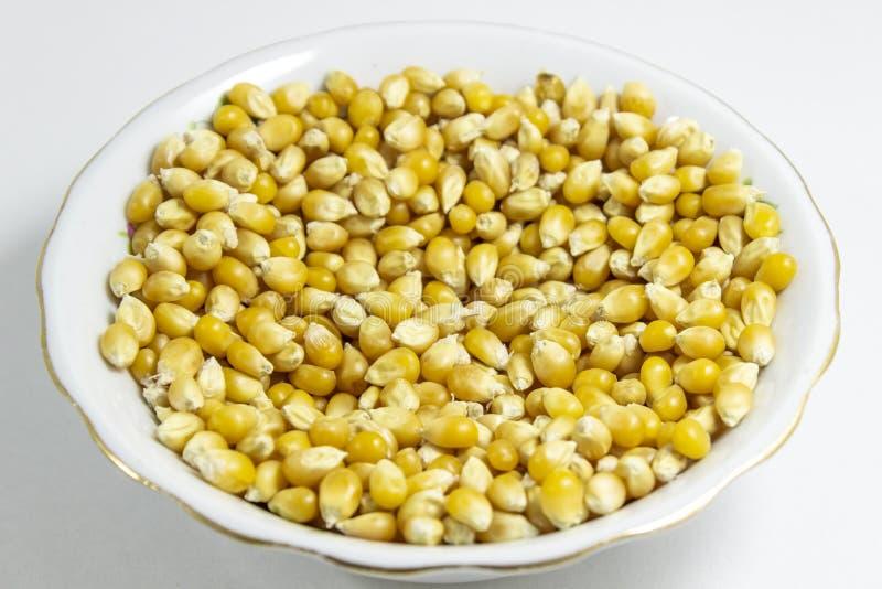 Tiro próximo de sementes múltiplas do milho no copo branco fotos de stock