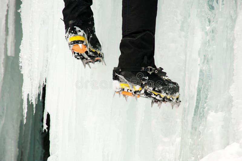 Tiro próximo dos pés do ` um s do montanhista no gelo imagem de stock royalty free