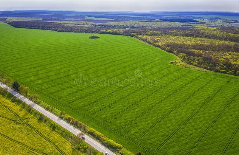 Tiro a?reo dos campos com tra?os de um trator na sementeira agr?cola do campo imagem de stock