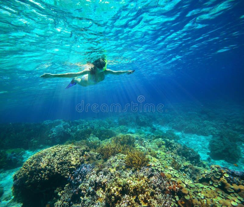 Tiro subacuático de una mujer que bucea en el sol imagen de archivo