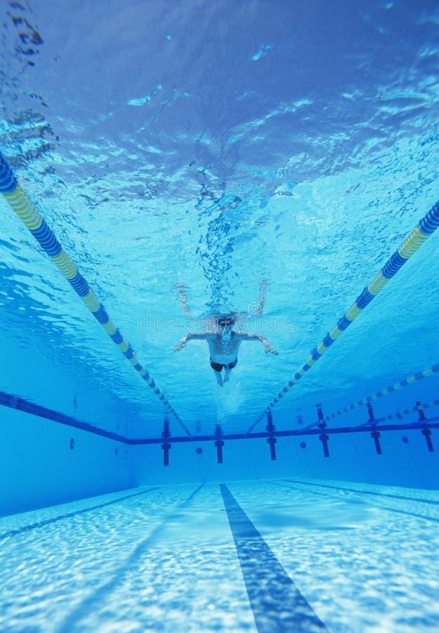 Tiro subaquático da natação masculina do atleta na associação fotos de stock royalty free