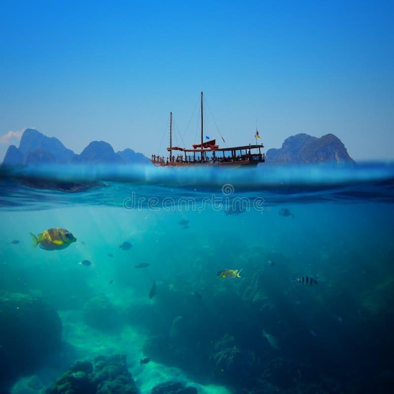 Tiro subaquático tropical fotografia de stock royalty free