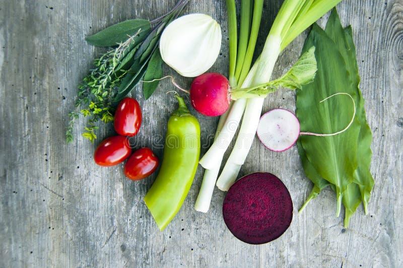 Tiro superior, cierre para arriba de la primavera joven colorida que cosecha recientemente, verduras frescas orgánicas, crujiente foto de archivo libre de regalías