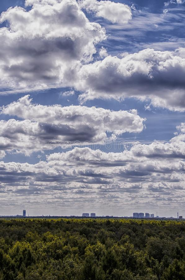 Tiro vertical de grandes nuvens bonitas no céu azul acima de uma floresta grossa verde fotografia de stock royalty free