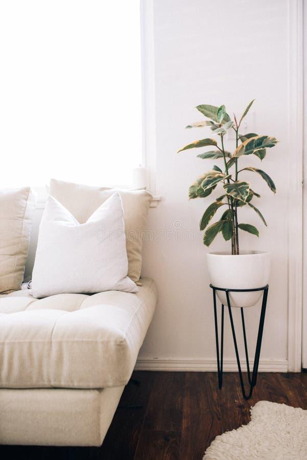Tiro vertical de un interior moderno de la casa con una planta en un pote blanco al lado de la cama imagenes de archivo