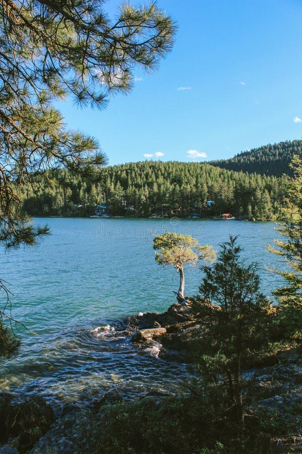 Tiro vertical do lago Flathead bonito em Montana, EUA fotografia de stock