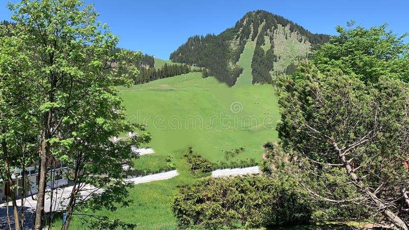Tirol stockfoto