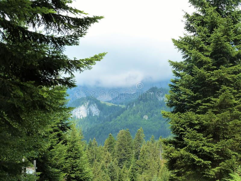 Tirol landskap royaltyfri bild
