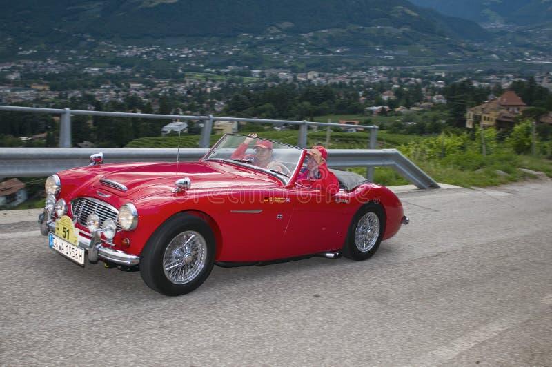 Tirol sul cars_2014_ clássico Austin HEALEY 100-6 BN 4 imagens de stock