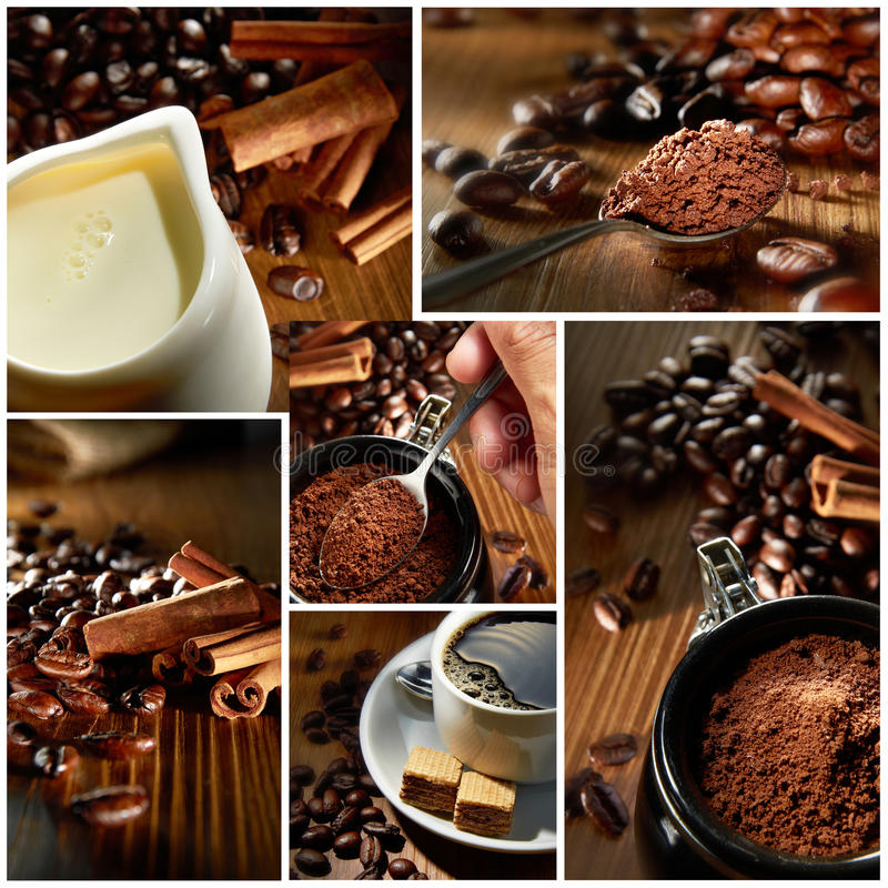 Tiros del café de la variedad
