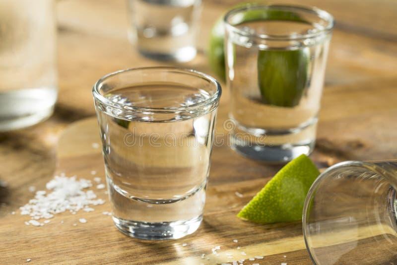 Tiros del Tequila de Mezcal del alcohol foto de archivo