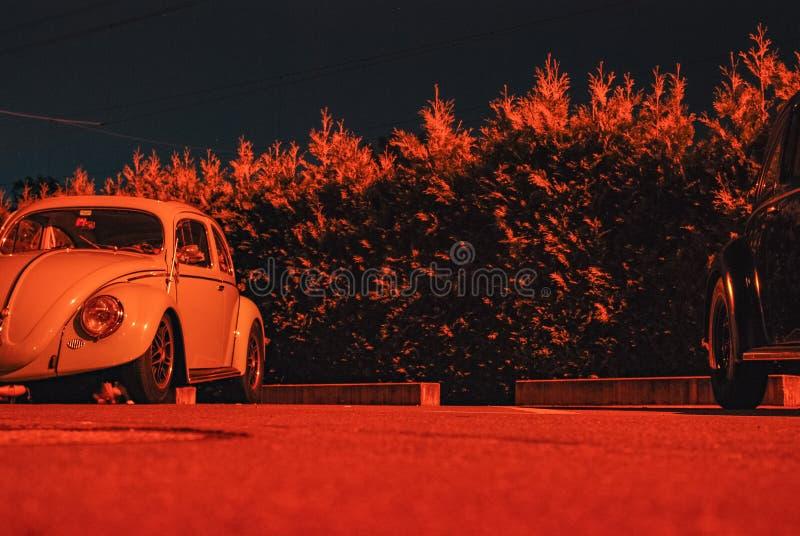 Tiroteo de la noche que sorprende de un oldtimer del insecto de volkswagen imagen de archivo