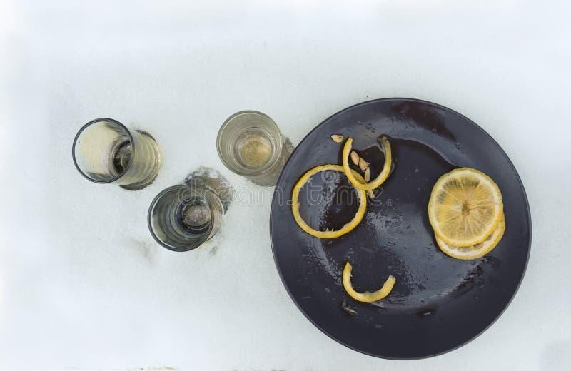 Tirs de vodka sur la neige images stock