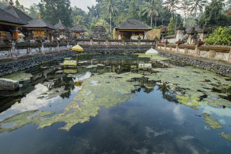 Tirta Empul tempel, en hinduisk Balinesevattentempel royaltyfri bild