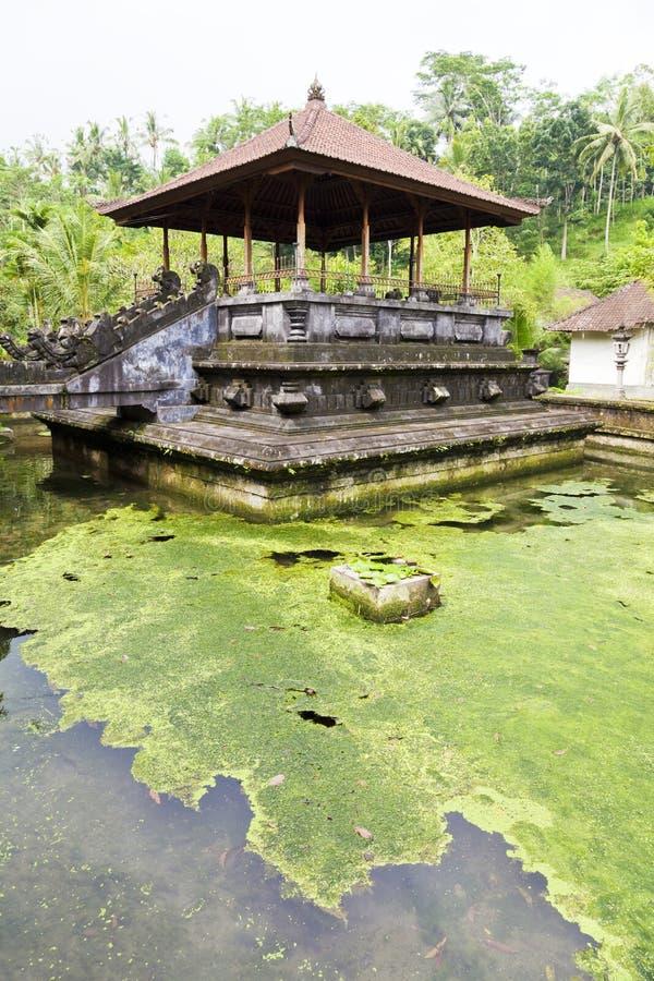 Tirtha Empul, Ubud, Bali, Indonesia fotografía de archivo libre de regalías