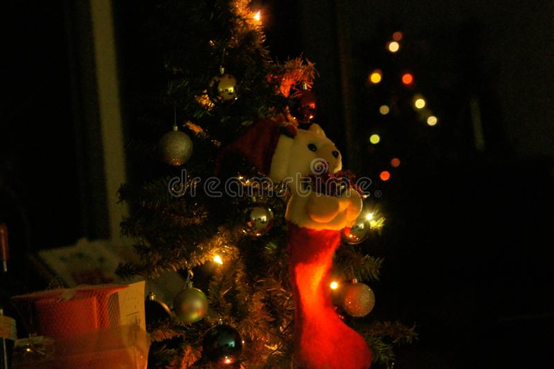 Tis the Night Before Christmas. And all was still. Not a creature was stiring, not even a mouse royalty free stock images
