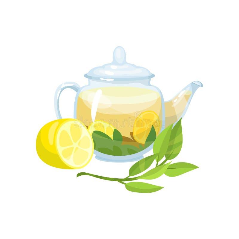 Tisana verde naturale in una teiera trasparente di vetro con l'illustrazione fresca di vettore del limone illustrazione di stock
