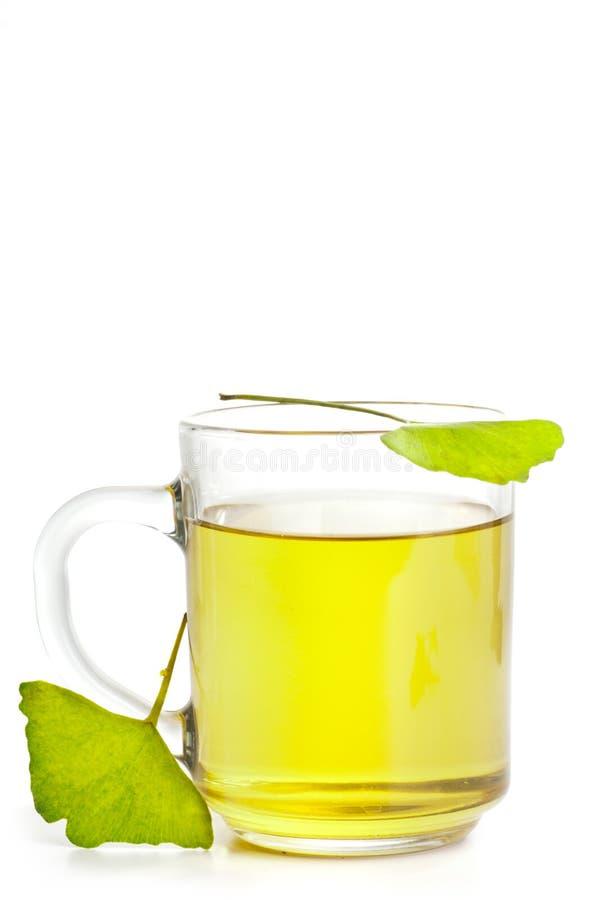 Avis Ginkgo Biloba - Quelle huile essentielle pour la concentration ...