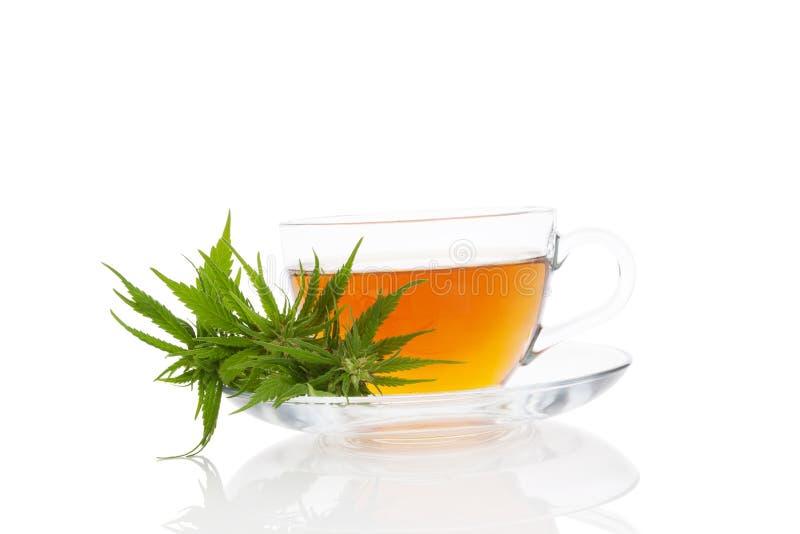 Tisane de cannabis images stock
