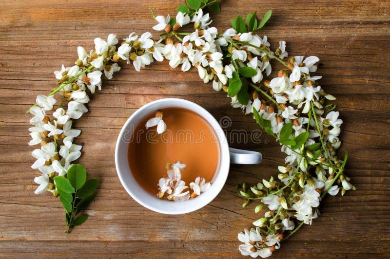Tisane et fleurs d'acacia images stock