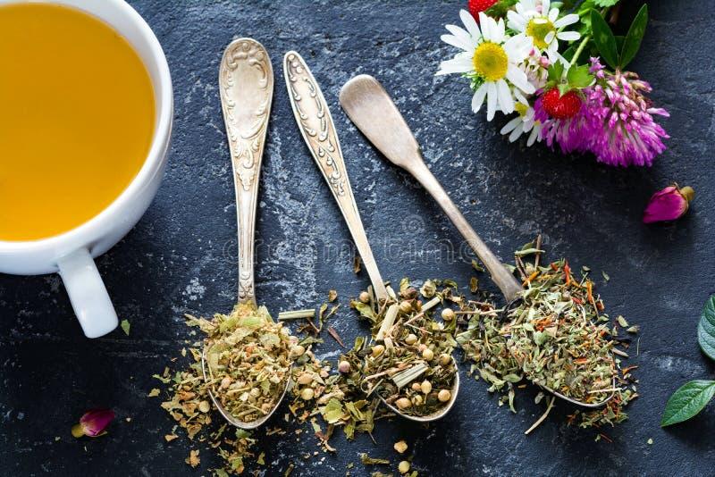 Tisane sèche dans des cuillères de thé de vintage photos libres de droits