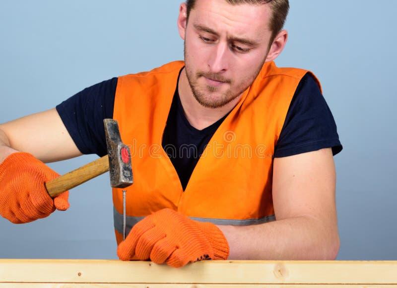 Tischler, Tischler auf dem starken Gesicht, das Nagel in hölzernes Brett hämmert Mann, Heimwerker in der hellen Weste und schütze lizenzfreie stockfotos