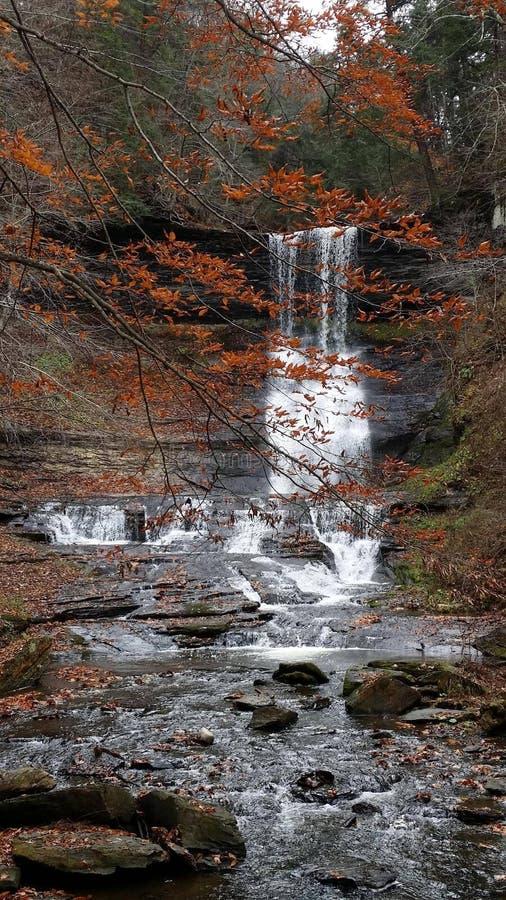 Tischler Falls Central NY stockfotos