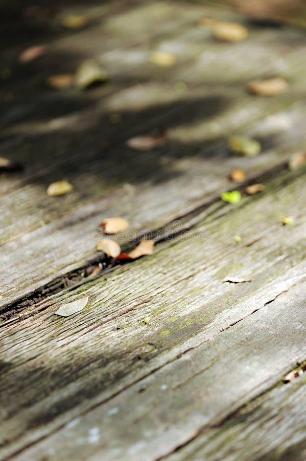 Tischplatteholz stockfoto