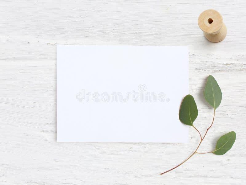 Tischplattenmodell der weiblichen Hochzeit mit Karte des leeren Papiers, hölzerne Spule und Eukalyptus Populus verzweigen sich au lizenzfreies stockbild