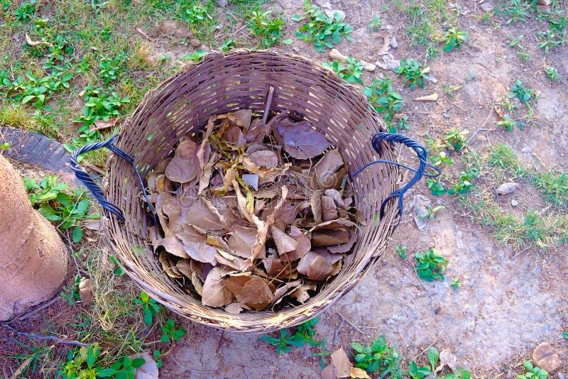 Tissez le panier de déchets, poubelle faite à partir du bambou tissant sur l'herbe fi photo libre de droits