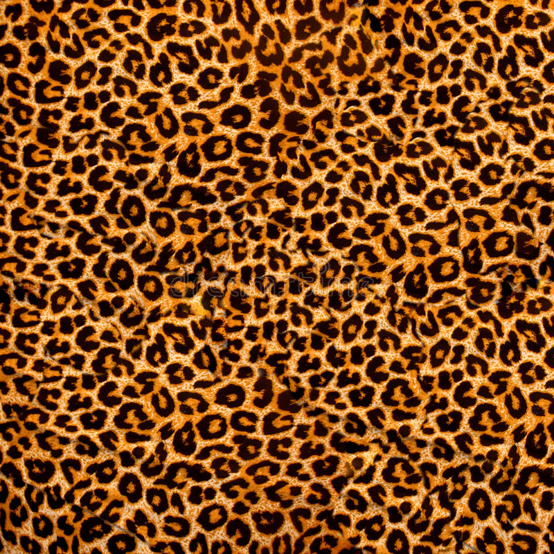 Tissu de léopard photographie stock