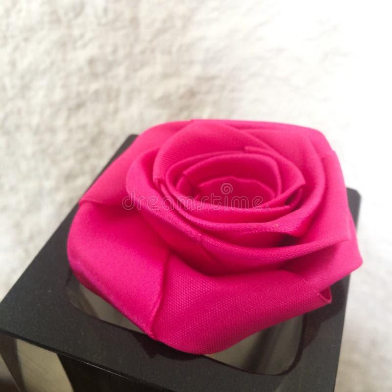 Tissu rose Rose photographie stock