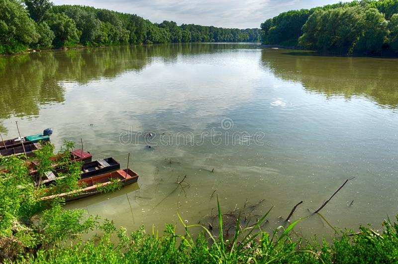 Tisza River at Tiszadada, Hungary. Summer season landscape. Wooden boats on the water. Green forest along the river. stock photo