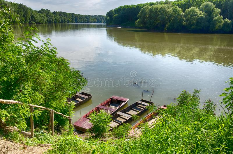 Tisza River at Tiszadada, Hungary. Summer season landscape. Wooden boats on the water. Green forest along the river. royalty free stock image
