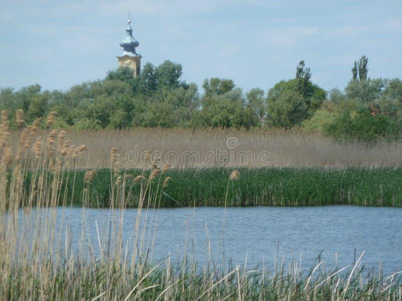 Tisza tó natural reserve area baroque church stock images