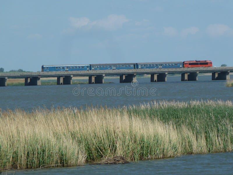 Tisza tó natural reserve area bridge red locomotive driven train on a bridge stock images