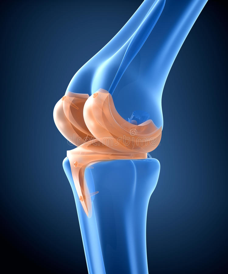 titanium för knä för gångjärnskarv illustration 3d vektor illustrationer