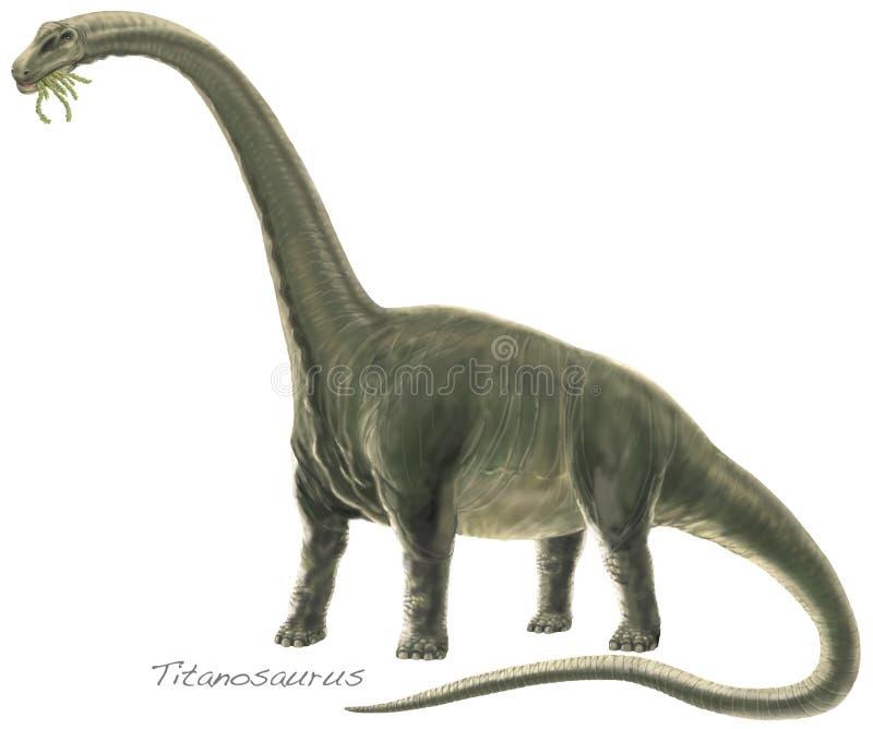 Titanosaur Argentinosaurus royalty-vrije illustratie