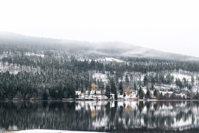 Titisee und Schluchsee Seen in Deutschland lizenzfreies stockbild