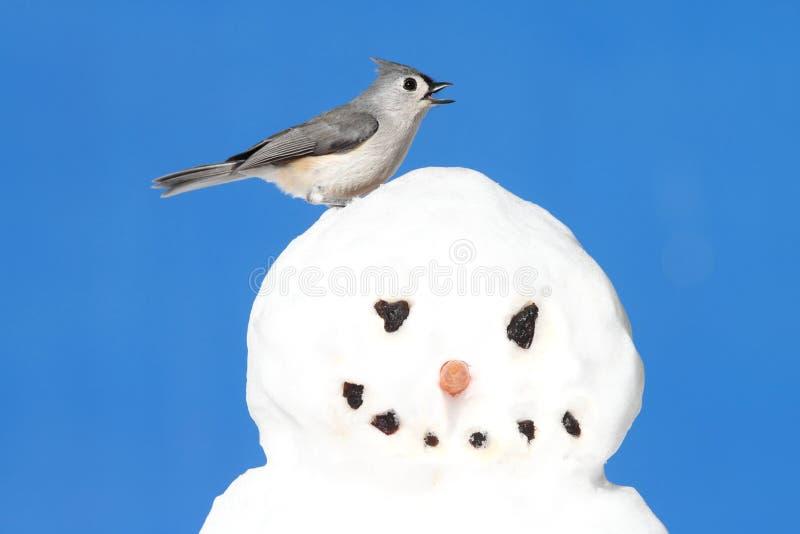 Titmouse en un muñeco de nieve fotografía de archivo