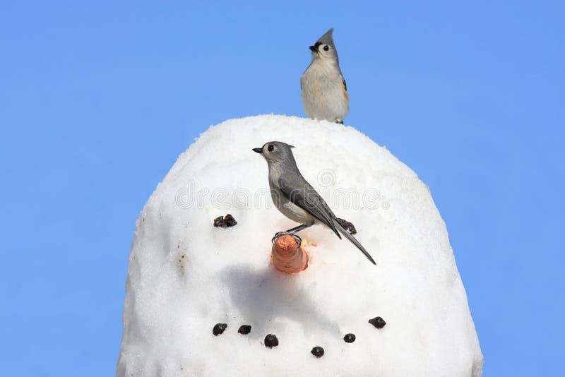Titmouse en un muñeco de nieve foto de archivo
