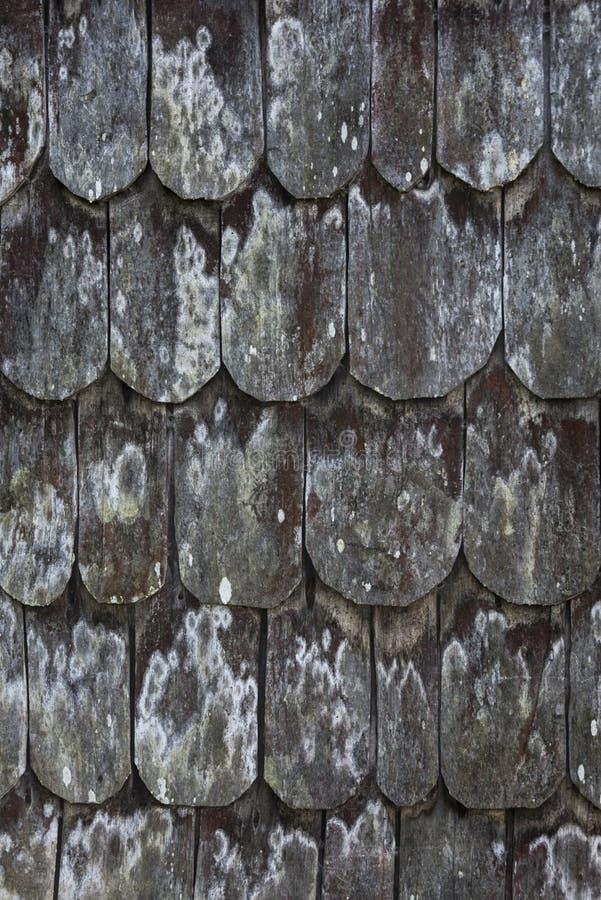 Titolo del tetto immagini stock libere da diritti