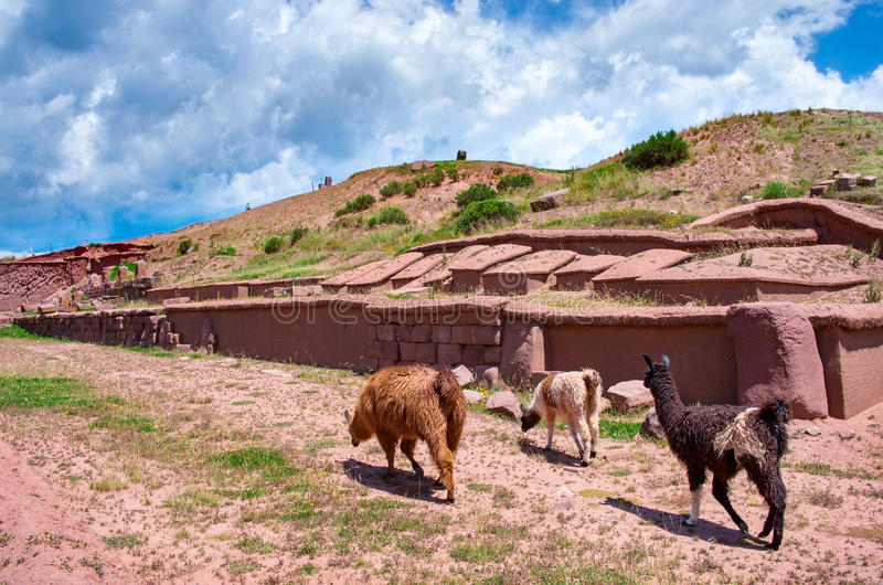 Tiwanaku. Ruins in Bolivia,. Pre-Columbian archaeological site stock photography