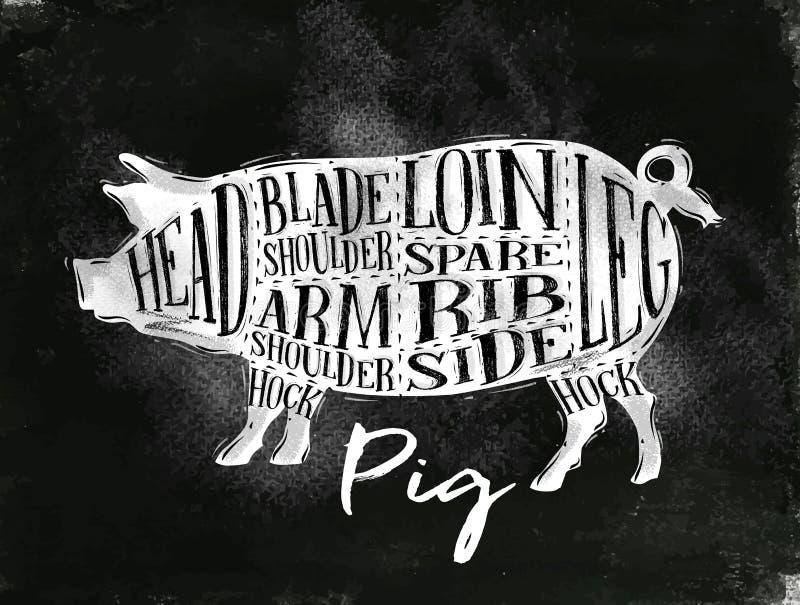 Tiza del esquema del corte del cerdo del cerdo ilustración del vector