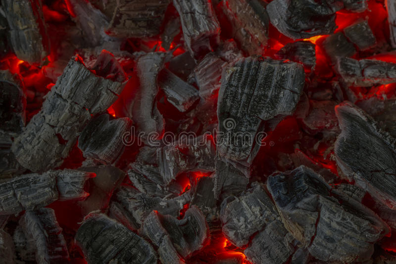 Tizzoni rossi immagini stock libere da diritti